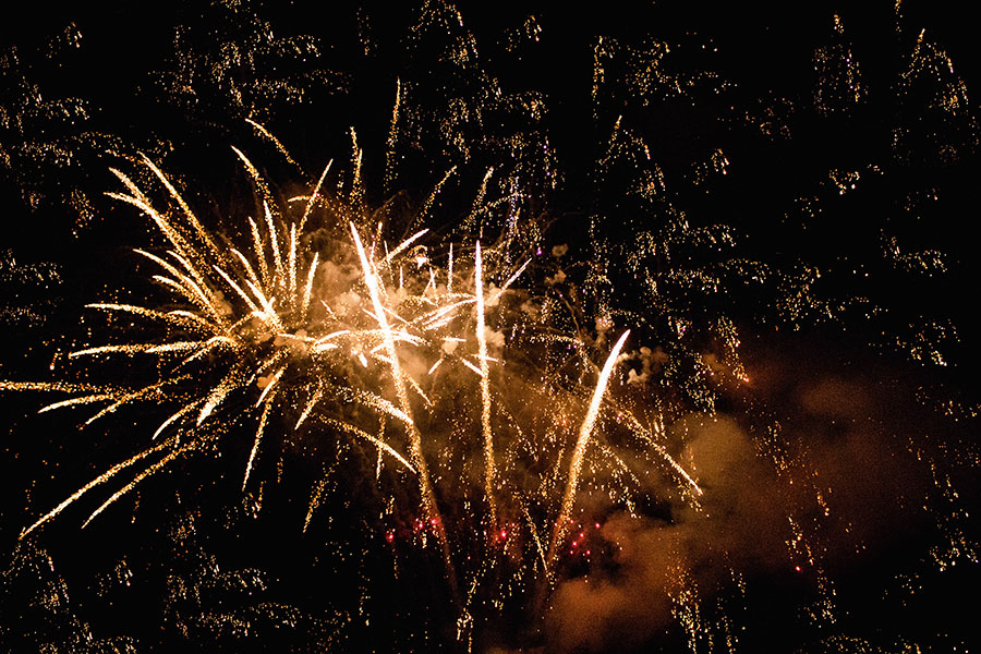 Seagulls-Bush-All-Fired-Up-Fireworks-Stage-Fx-5